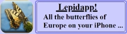 Lepidapp - all Europe's butterflies on your iPhone